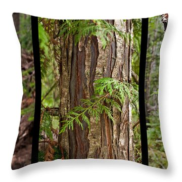 Tree Wear By Nature Throw Pillow by Sandi Mikuse