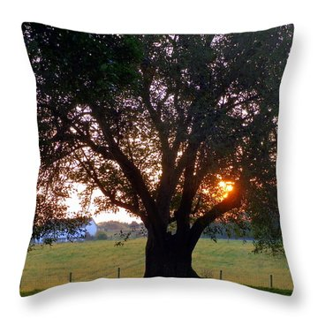 Tree With Fence. Throw Pillow