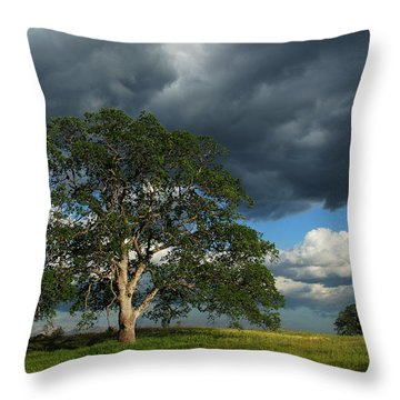 Tree With Storm Clouds Throw Pillow