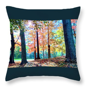 Trees Along The Lyman Estate Throw Pillow