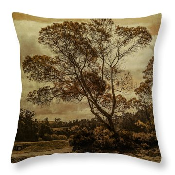 Trees And Hot Sand Throw Pillow