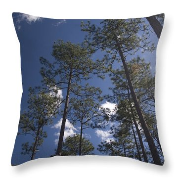 Throw Pillow featuring the photograph Trees And Nature by Charles Beeler