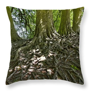 Trees And Roots Wiltshire England Throw Pillow by Robert Preston