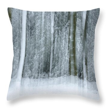Trees And Snow Abstract Throw Pillow by David Birchall