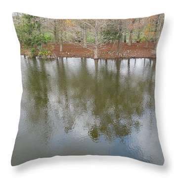 Throw Pillow featuring the photograph Trees And Water by Ron Davidson