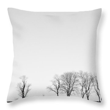 Throw Pillow featuring the photograph Trees At Colt State Park by Nancy De Flon