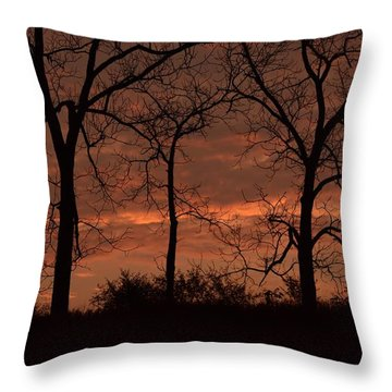 Trees At Sunrise Throw Pillow