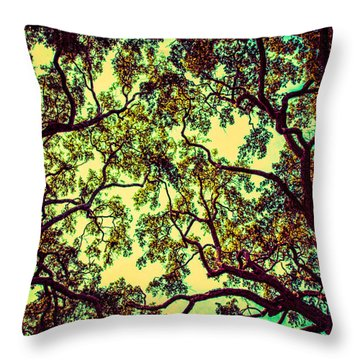 Trees Closing In Throw Pillow by J Riley Johnson