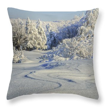 Trees Covered With Snow In A Sunny Winter Day Throw Pillow