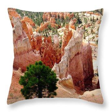 Throw Pillow featuring the photograph Tree's Eye View by Meghan at FireBonnet Art