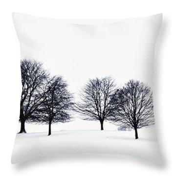 Trees In A Snowy Field In Chatsworth Throw Pillow by John Doornkamp