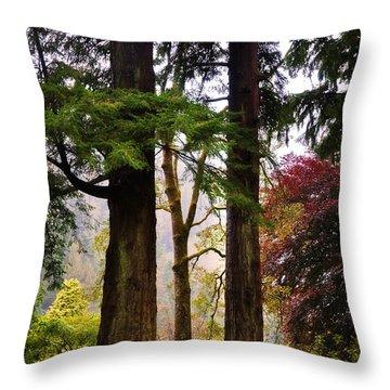 Trees In Autumn Glory. Scotland Throw Pillow by Jenny Rainbow