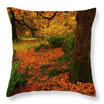 Trees In Autumn Woodland Throw Pillow