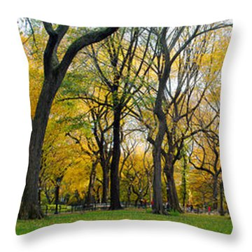 Throw Pillow featuring the photograph Trees In Central Park by Yue Wang