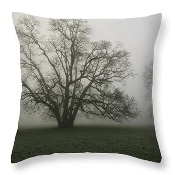 Trees In Fog Throw Pillow