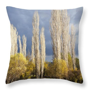 Trees In Ruins Throw Pillow