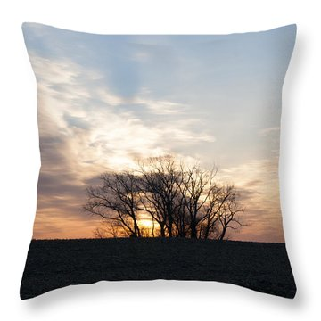 Trees In Sunrish Throw Pillow by Dawn Romine