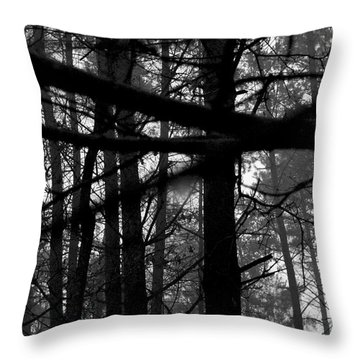 Throw Pillow featuring the photograph How Many Triangles Can You See? by Maja Sokolowska