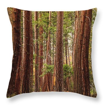 Trees Of Yosemite Throw Pillow