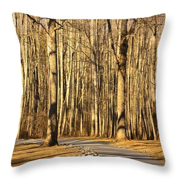 Trees Shadows Throw Pillow by Tammy Schneider