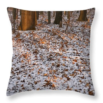 Trees Throw Pillow by Steven Ralser