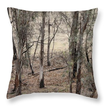 Throw Pillow featuring the photograph Trees Survived Wild Fire by Viktor Savchenko