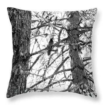 Throw Pillow featuring the photograph Trees by Tarey Potter