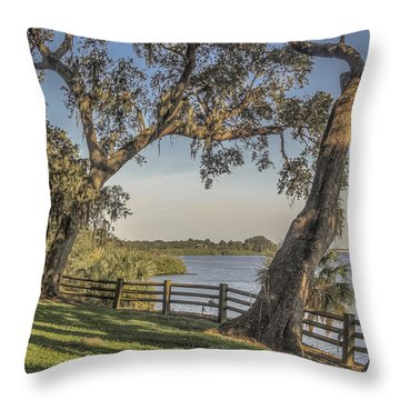 Throw Pillow featuring the photograph Trees With A View by Jane Luxton