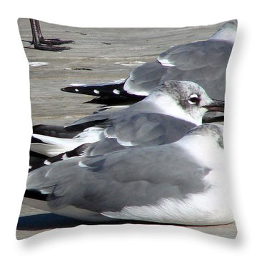 Throw Pillow featuring the photograph Tres Amigos by Linda Cox