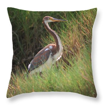Throw Pillow featuring the photograph Tri-color Heron by Leticia Latocki