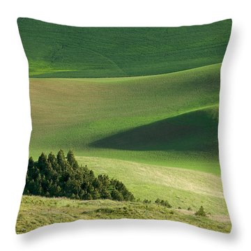 Triangle And Trees Throw Pillow