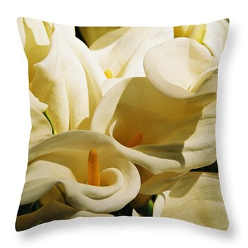 Tribute To Georgia O'keefe Throw Pillow