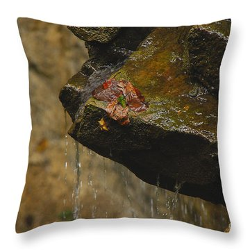Trickling Water Throw Pillow by Mary Carol Story