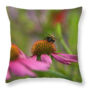 Tricky Terrain Throw Pillow
