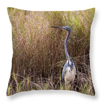 Throw Pillow featuring the photograph Tricolored Heron Peeping Over The Rushes by John M Bailey