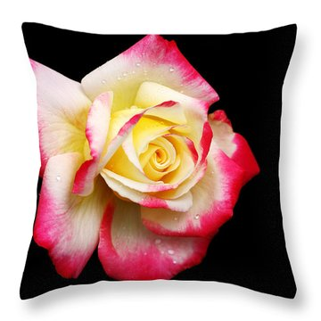 Throw Pillow featuring the photograph Tricolour Magesty by Doug Norkum