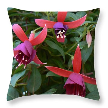 Throw Pillow featuring the photograph Trifecta by Michael Porchik