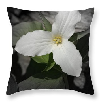 Throw Pillow featuring the photograph Trillium 2 by Henry Kowalski