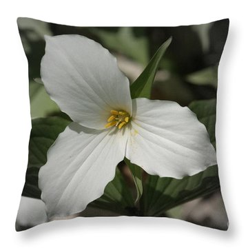 Throw Pillow featuring the photograph Trillium by Henry Kowalski