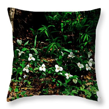 Trillium In Morning Sun Throw Pillow by Michelle Calkins