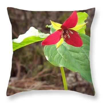 Throw Pillow featuring the photograph Trillium by Joy Nichols