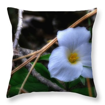 Throw Pillow featuring the photograph Trillium On County C by Trey Foerster