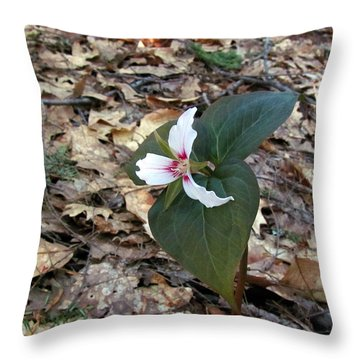 Painted Trillium Throw Pillow