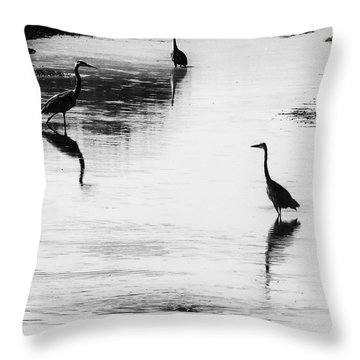 Trilogy - Black And White Throw Pillow
