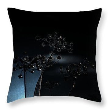 Trilogy Throw Pillow