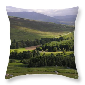 Summer In The Hills Of Perthshire  Throw Pillow