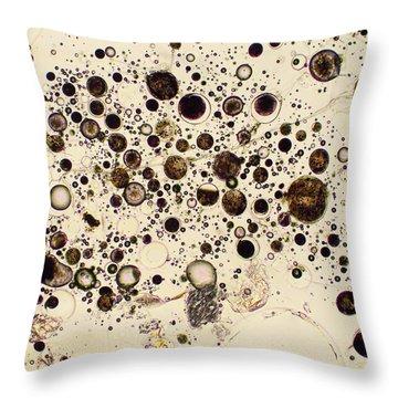Trinity Sands Throw Pillow