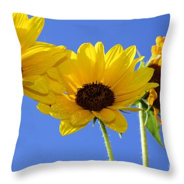Trio In The Sun - Yellow Daisies By Diana Sainz Throw Pillow