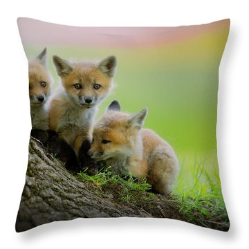 Trio Of Fox Kits Throw Pillow by Everet Regal