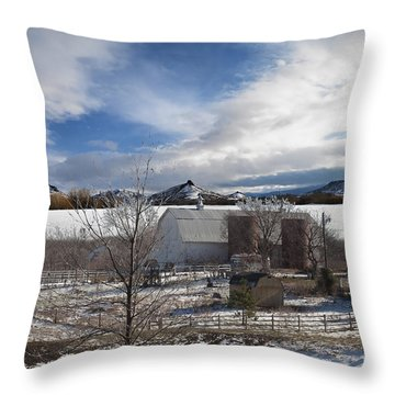 Throw Pillow featuring the photograph Trip To Baldwin City Kansas by Liane Wright